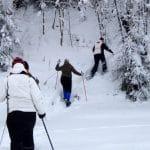 Talvinen luontoretki