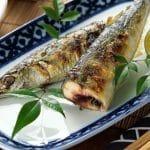 Tutkimus: Kalan syönti pidentää ikää