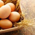 Kannattaako kananmunia syödä?