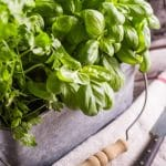 Kasvata yrttejä pihalla, parvekkeella tai ikkunalla